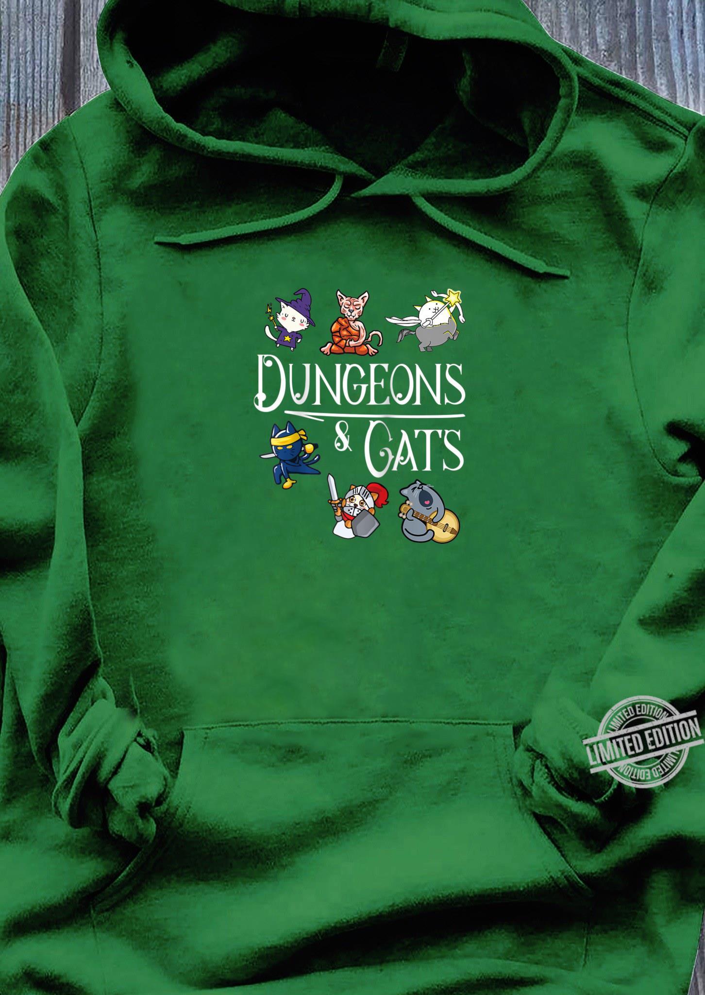Dungeons and Cats Dragon Cat Kitten Kitty Shirt hoodie