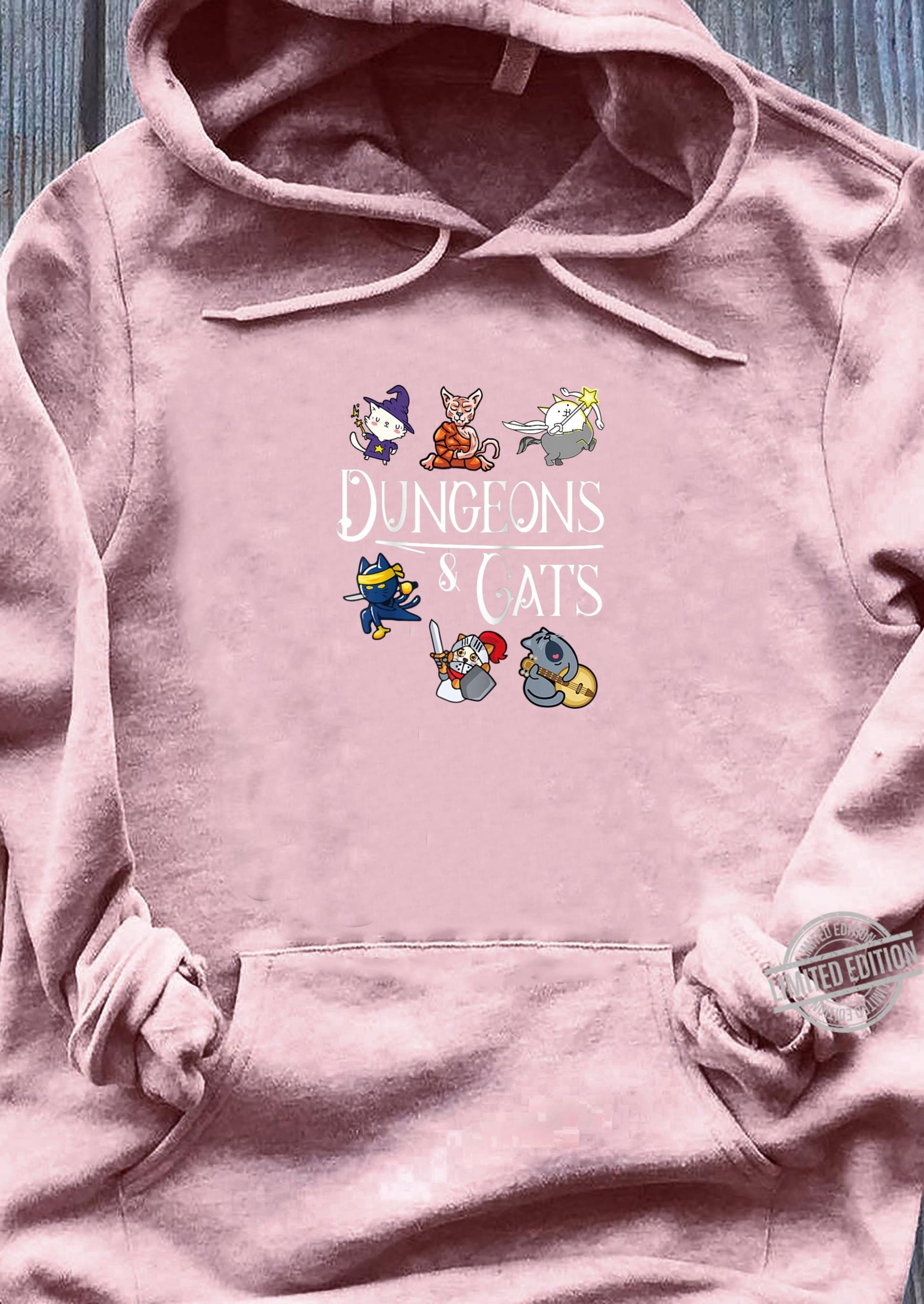 Dungeons and Cats Dragon Cat Kitten Kitty Shirt sweater